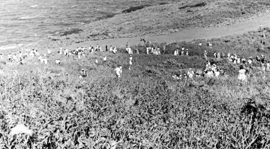 People awaiting historic landing on improvised landing strip Feb. 9th, 1959