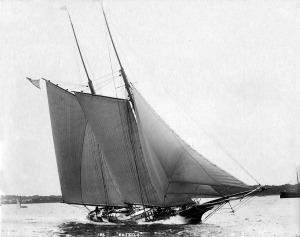 186-estelle