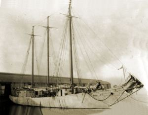 Scooner Mayflower