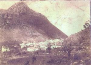 Image (535)