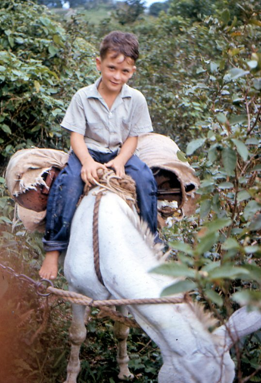 Bennett Johnson riding the donkeySeptember 1964