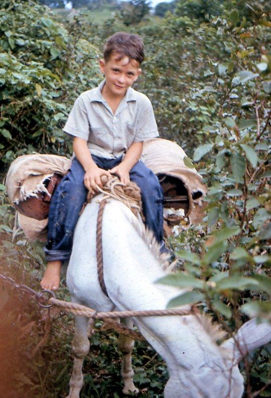 Bennett Johnson riding the donkeySeptember 1964